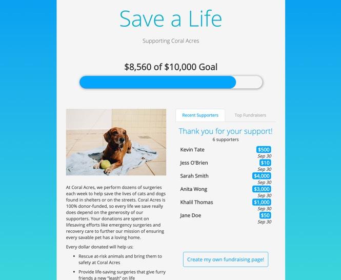 crowdfunding form