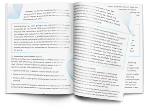 Donor Advised Funds E-book Mockup