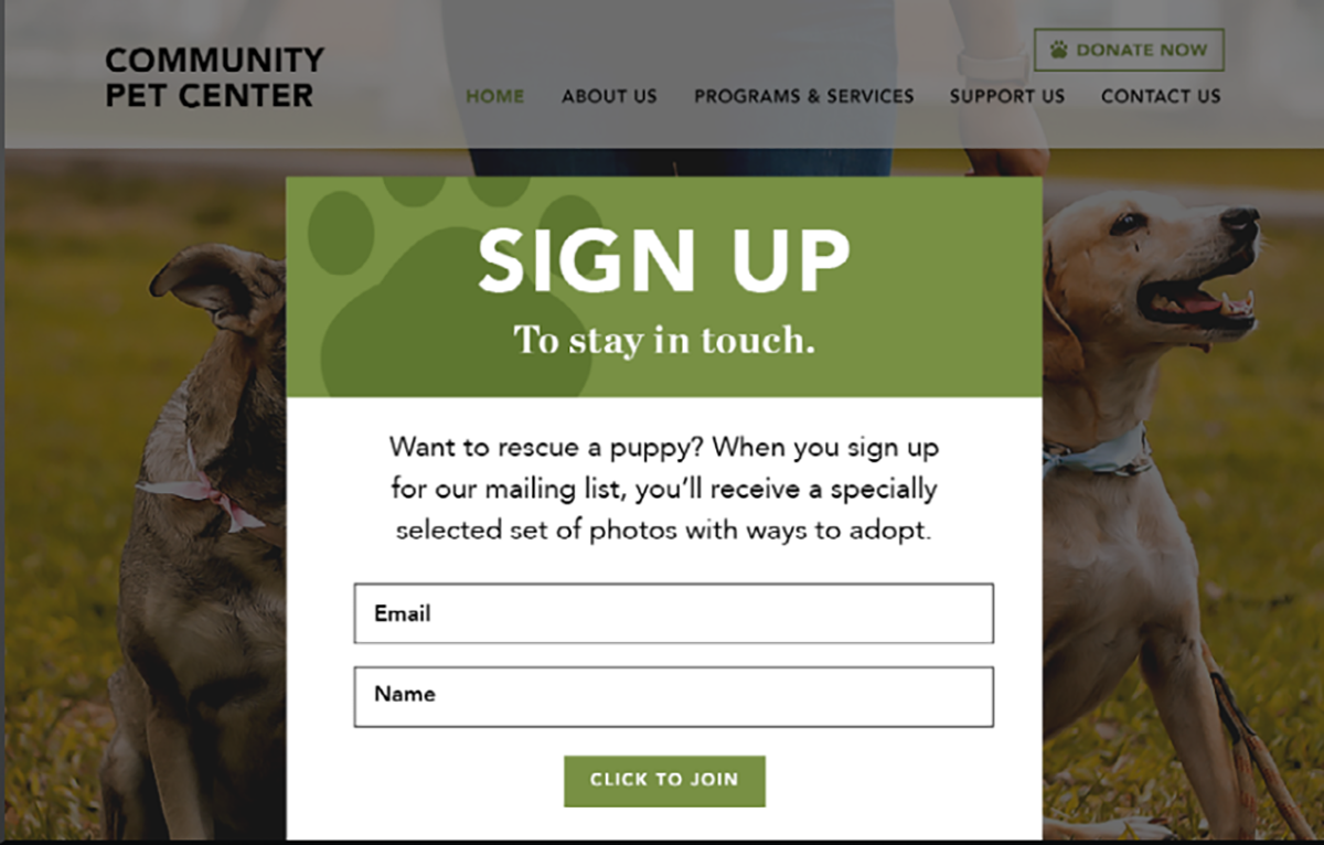 an example of a bold pop-up form