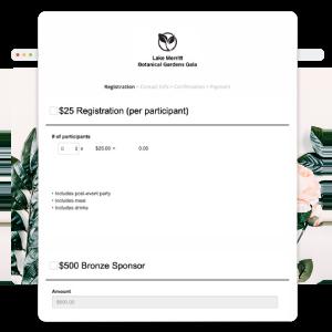 Screenshot of Nonprofit Donation Form