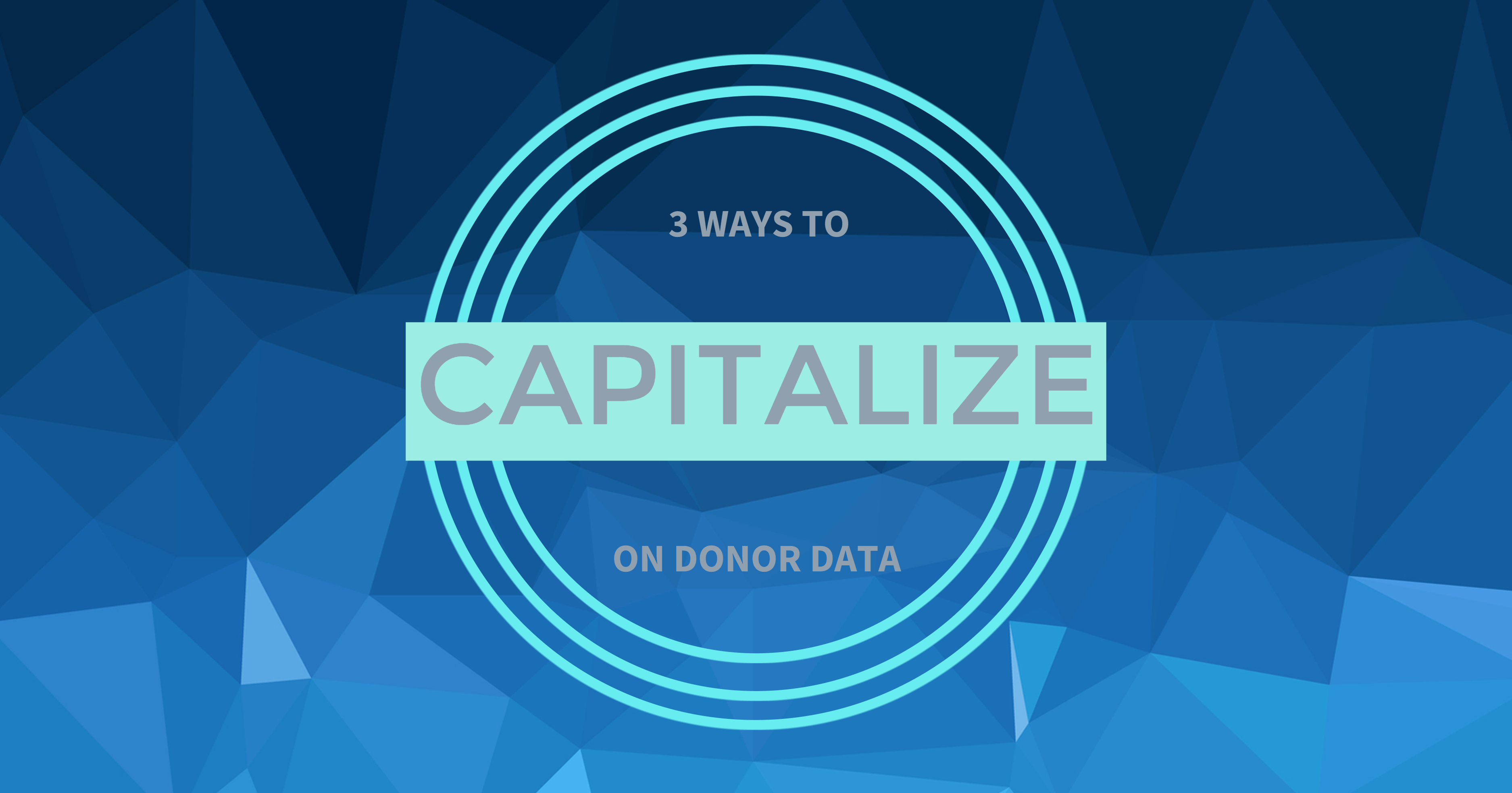 Capitalize on Donor Data